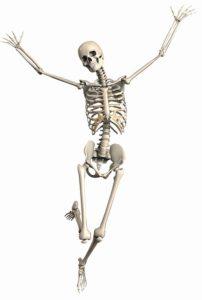 骨(ばんざいポーズ)
