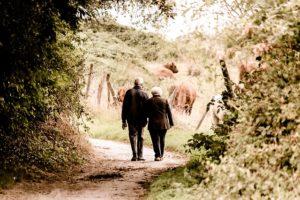 牧場を歩く老夫婦